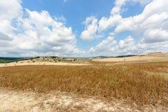 Toskana-Ackerland Lizenzfreies Stockfoto