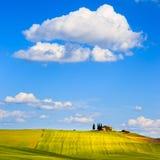 Toskana-, Ackerland- und Zypressenbäume, Grünfelder Pienza, Italien Stockfotos
