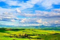 Toskana-, Ackerland- und Zypressenbäume, Grünfelder San Quirico O Lizenzfreies Stockfoto