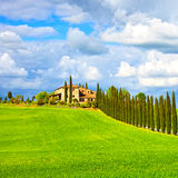 Toskana, Ackerland, Zypressenbäume rudern und fangen auf Siena, Butzkopf Val d lizenzfreies stockfoto