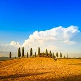 Toskana, Ackerland, Zypressenbäume und weiße Straße. Lizenzfreie Stockbilder