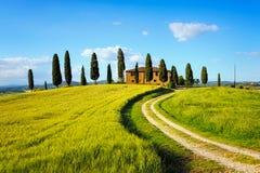 Toskana, Ackerland, Zypressenbäume und weiße Straße auf Sonnenuntergang Siena Stockbild