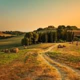Toskana, Ackerland, Zypressenbäume und weiße Straße auf Sonnenuntergang Siena Lizenzfreies Stockbild