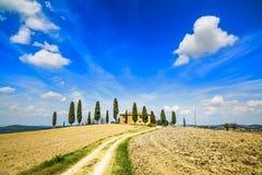 Toskana, Ackerland, Zypressenbäume und weiße Straße. Siena, Val d Orcia, Italien. Stockbild