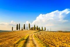 Toskana, Ackerland, Zypressenbäume und weiße Straße. Siena, Val d Orcia, Italien. Lizenzfreie Stockbilder