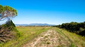 Toskana, Ansicht der Wiese und Apennines im Hintergrund lizenzfreies stockfoto