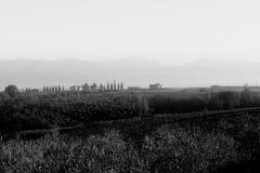 Toskana-Bauernhöfe Stockbild