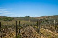 Toskana-Chianti-Landschaft Stockfotos