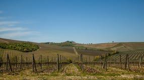 Toskana-Chianti-Landschaft Stockfotografie