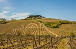 Toskana-Chianti-Landschaft Lizenzfreie Stockbilder