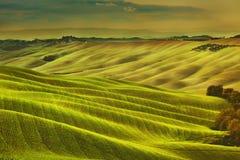 Toskana-Frühling, Rolling Hills auf nebelhaftem Sonnenuntergang Landwirtschaftliche Landschaft Lizenzfreies Stockbild