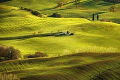 Toskana-Frühling, Rolling Hills auf nebelhaftem Sonnenuntergang Landwirtschaftliche Landschaft Stockbild