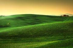 Toskana-Frühling, Rolling Hills auf Sonnenuntergang Landwirtschaftliche Landschaft Grün Stockfoto