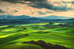 Toskana-Frühling, Rolling Hills auf Sonnenuntergang Landwirtschaftliche Landschaft Grün Stockfotos