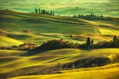 Toskana-Frühling, Rolling Hills auf nebelhaftem Sonnenuntergang Landwirtschaftliche Landschaft Stockbilder