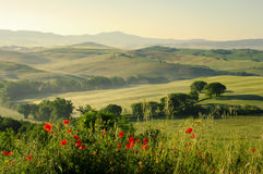 Toskana-Hügel lizenzfreie stockbilder