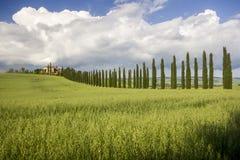Toskana (Italien) stockbild