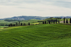 Toskana, Italien Lizenzfreies Stockfoto