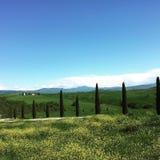 Toskana Italien Stockfotografie
