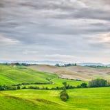 Toskana, ländliche Landschaft. Landschaftsackerland, weiße Straße und Bäume. Orcia-Tal, Toskana, Italien. Lizenzfreie Stockbilder