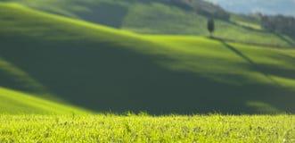Toskana-Landschaft 2 stockbild