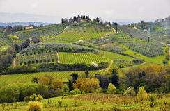 Toskana-Landschaft Lizenzfreies Stockfoto