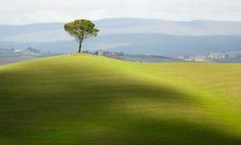 Toskana-Landschaft Stockfotos