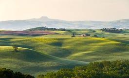Toskana-Landschaft mit Bauernhof, Val d'Orcia, Italien Stockbild