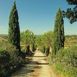 Toskana-Landschaft mit Landstraße zeichnete mit Zypresse und Stift Stockfotos
