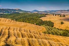 Toskana-Landschaft mit Rolling Hills bei Sonnenuntergang, Val-d'Orcia, Italien Stockfotografie