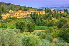 Toskana-Landschaft mit Stadt und olivgrüner Plantage auf dem Hügel Stockbilder
