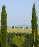 TOSKANA-Landschaft mit Zypresse und Bauernhöfen Stockfoto