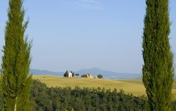 TOSKANA-Landschaft mit Zypresse und Bauernhöfen Stockbilder