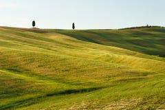 Toskana, Landschaft in Mittel-Italien Stockbild