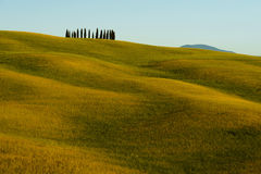 Toskana, Landschaft in Mittel-Italien Stockbilder