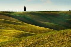 Toskana, Landschaft in Mittel-Italien Stockfotografie