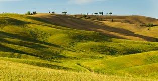 Toskana, Landschaft in Mittel-Italien Lizenzfreies Stockbild