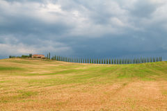Toskana-Landschaft, schöne grüne Hügel und Zypressenbaum rudern SP stockfoto