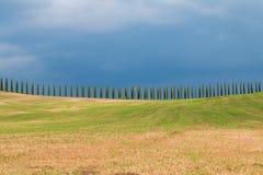 Toskana-Landschaft, schöne grüne Hügel und Zypressenbaum rudern SP lizenzfreie stockfotos