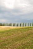 Toskana-Landschaft, schöne grüne Hügel und Zypressenbaum rudern SP stockbild