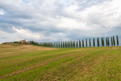 Toskana-Landschaft, schöne grüne Hügel und Zypressenbaum rudern SP lizenzfreie stockbilder