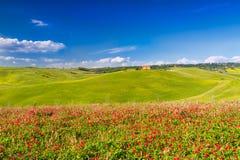 Toskana-Landschaft in Val-d'Orcia, Pienza, Italien Stockfotos