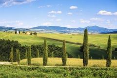 Toskana-Landschaft, Zypressenbäume und Rückseite Vitaleta-Kapelle an, VA Lizenzfreie Stockfotos