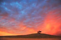 Toskana, rote Sonnenunterganglandschaft Maremma Ländlicher Turm und Baum auf h Stockfoto