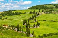 Toskana-Straße mit Zypressenbäumen, Val d'Orcia, Italien Lizenzfreie Stockfotos