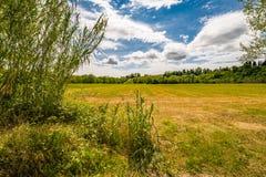 Toskana und Romagna Apennines lizenzfreie stockfotografie