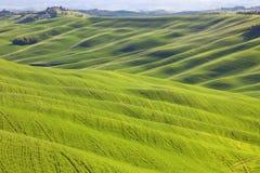 Toskana, wallend landwirtschaftliche Landschaft, Italien Lizenzfreie Stockbilder