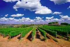 Toskana-Wein-Gutshaus lizenzfreie stockfotografie