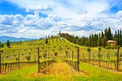 Toskana, Weinberg, Zypressenbäume und Dorf Ländliche Landschaft, I Lizenzfreies Stockbild