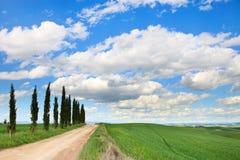Toskana, Zypresse-Bäume, Straße, grünes Feld, Italien. Lizenzfreie Stockbilder